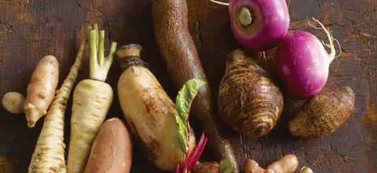 veg roots2